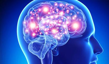 Estudo revela que o cérebro é capaz de armazenar petabytes