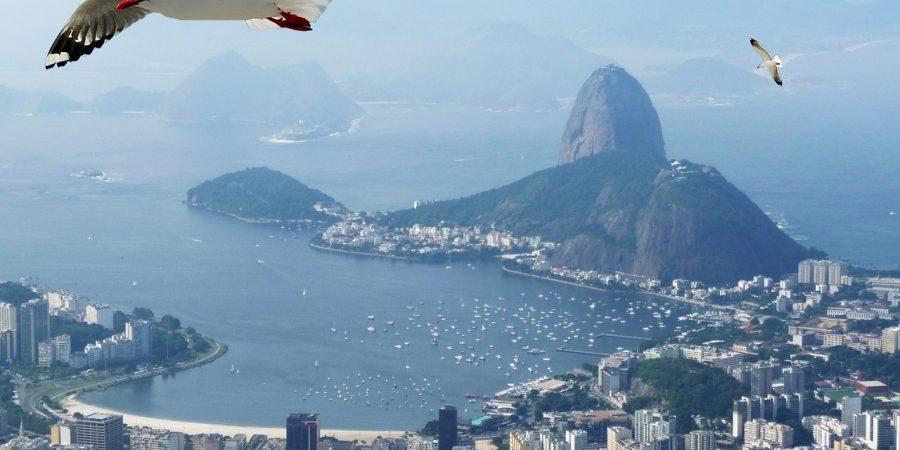 Lugares para curtir a primavera no Rio de Janeiro