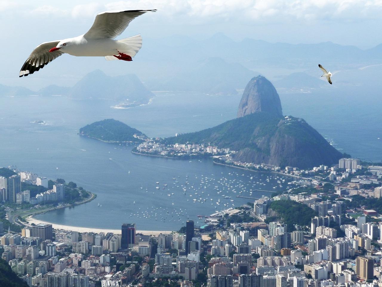 Lugares para aproveitar a primavera no Rio de Janeiro